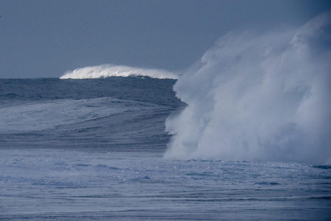 Henty Reef-15