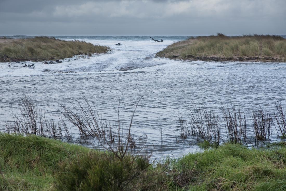 John Langmead_Barham River High Tide_5263_20180617_Online