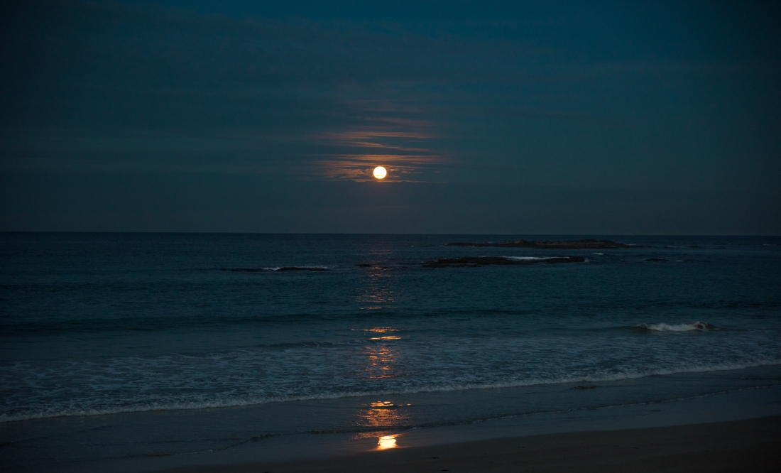 John Langmead_Full Moon Ltl Henty_5831_20180628_Online