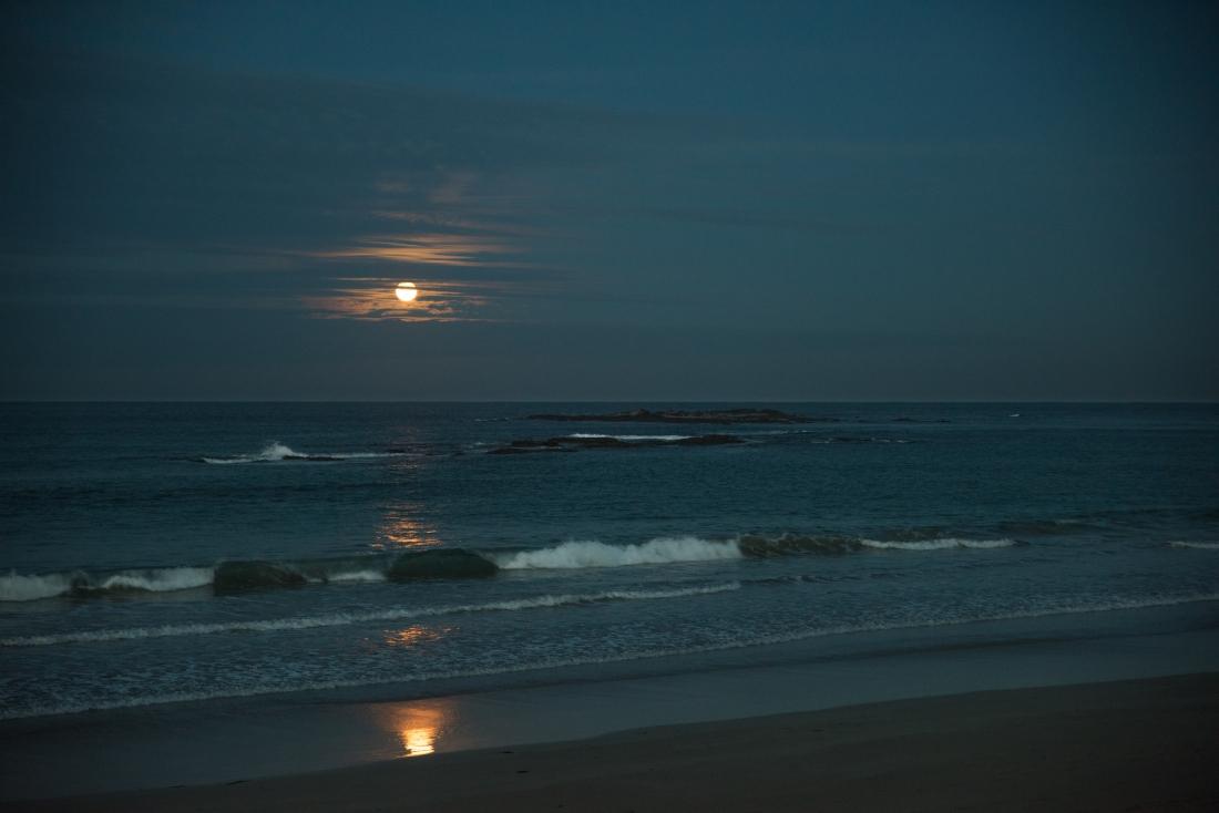 John Langmead_Full Moon Ltl Henty_5837_20180628_Online