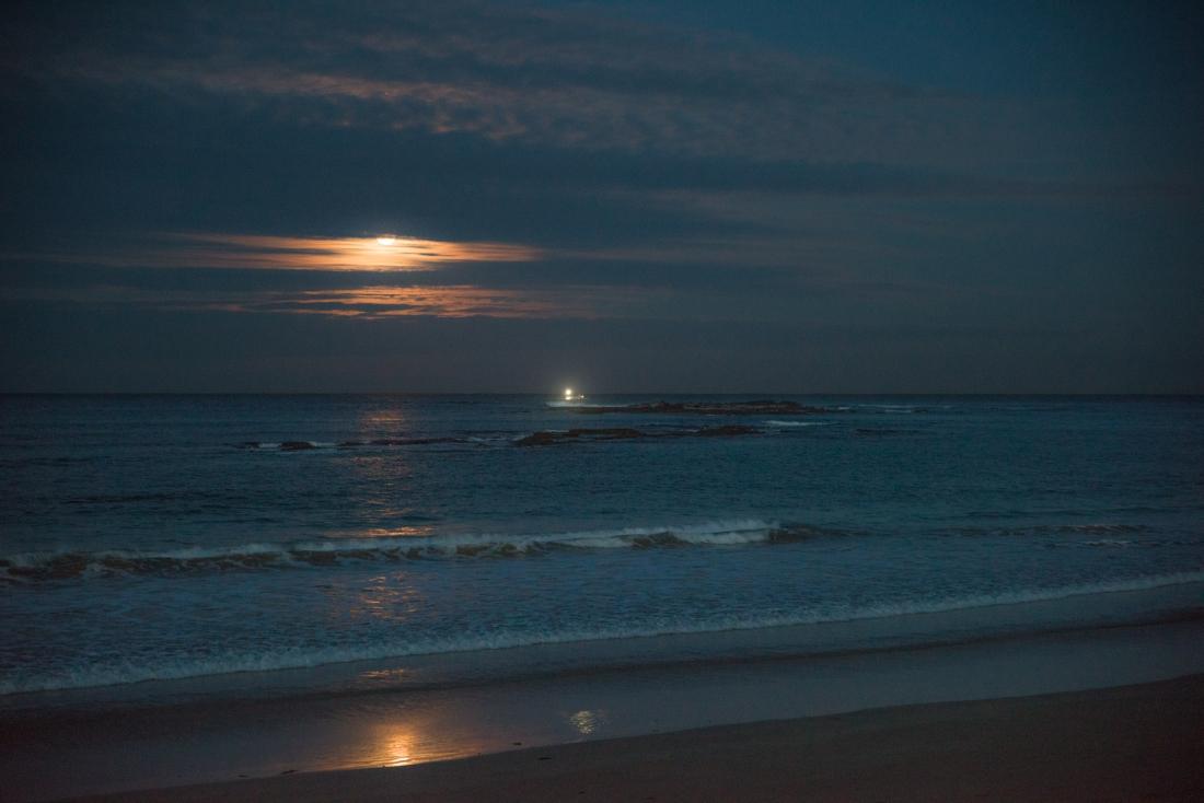 John Langmead_Full Moon Ltl Henty_5854_20180628_Online