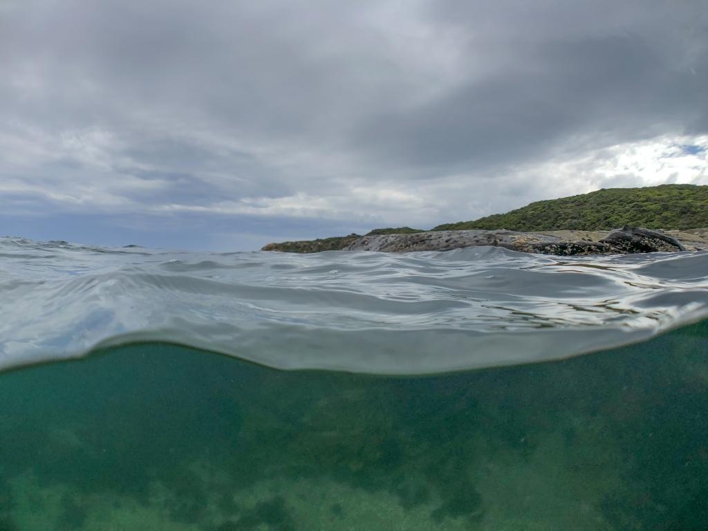 Underwater and shore