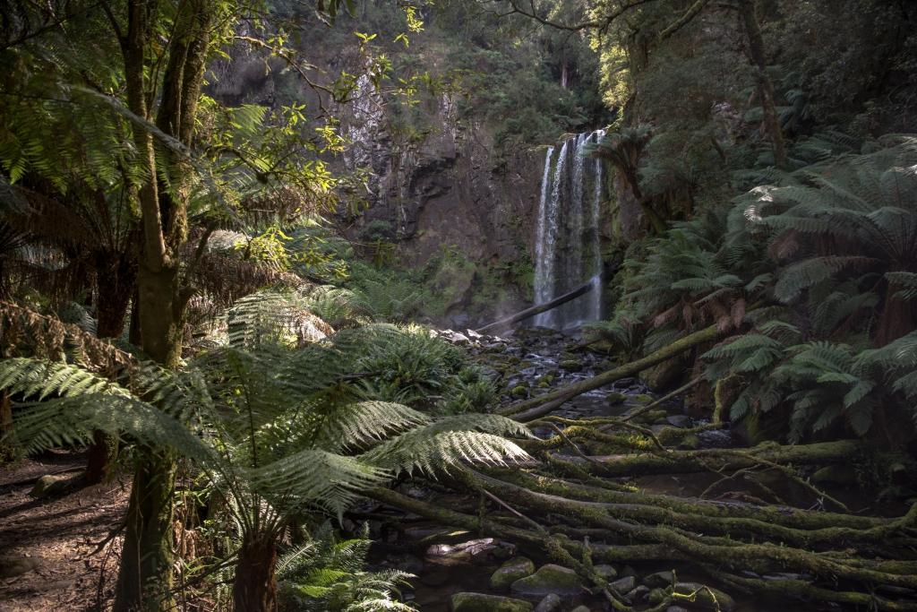 Hopetoun Falls Otway Ranges