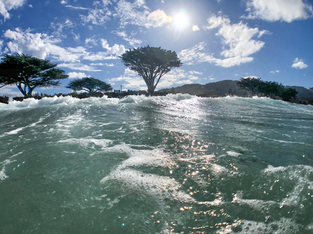 GoPro shot taken in the surf at Apollo Bay