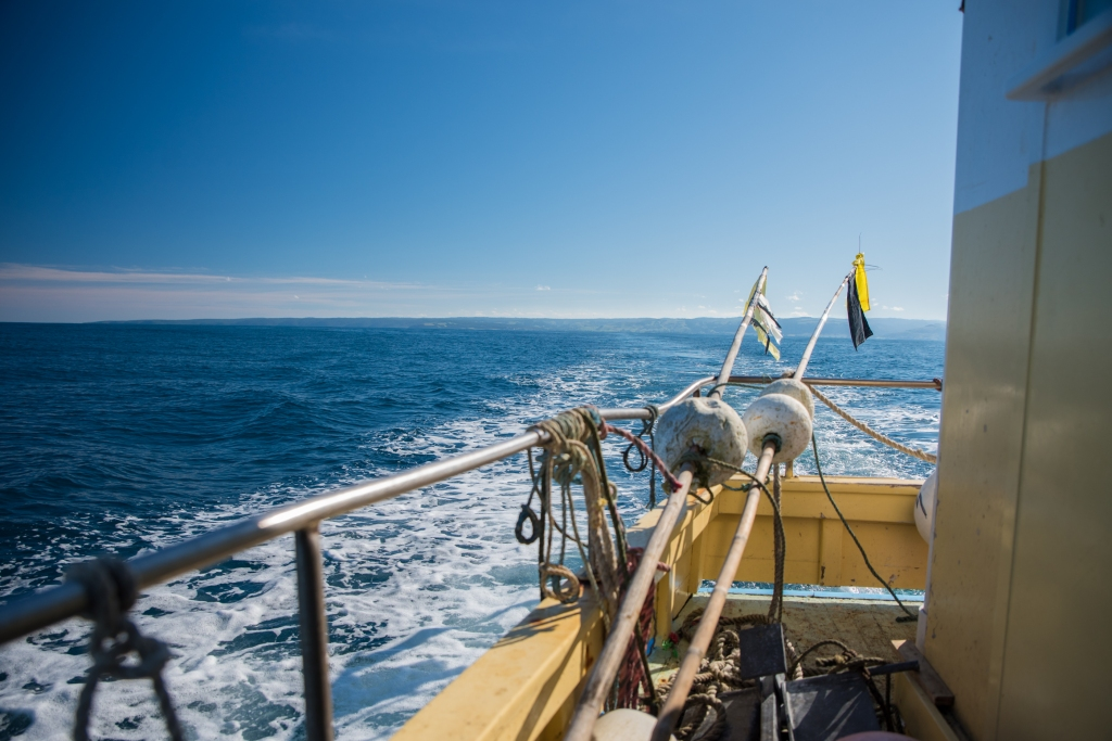 Ocean view over stern of cray boat