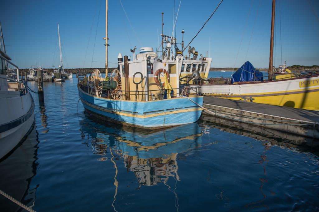 Karelene-Marie in pen at Apollo Bay harbour