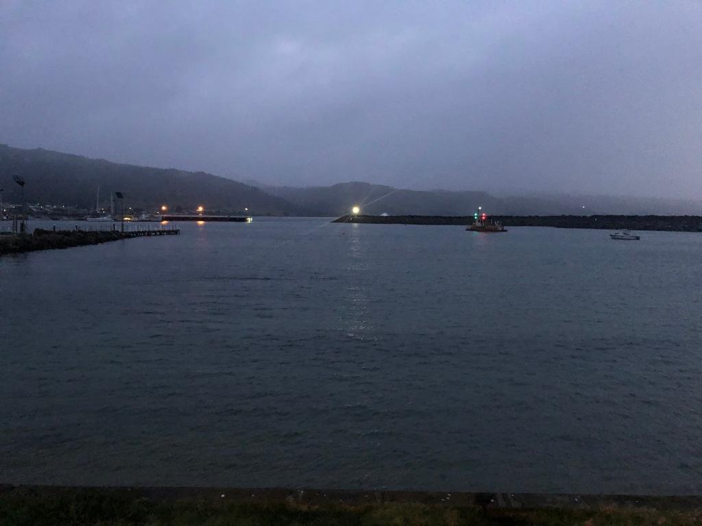Apollo Bay harbour night swim