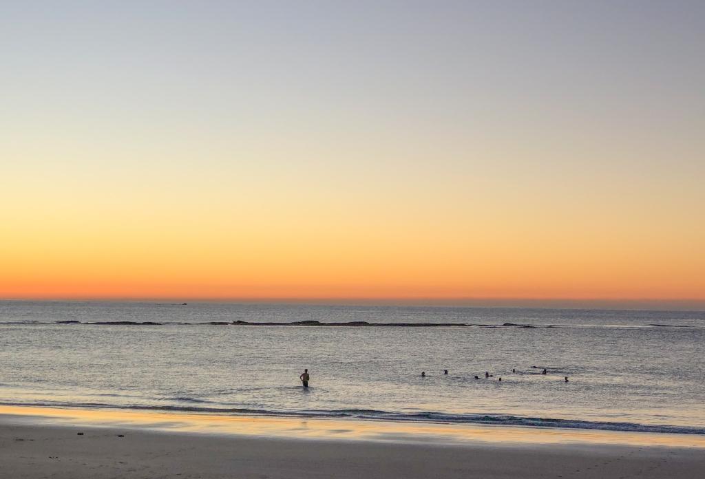 Marengo plonkers at dawn
