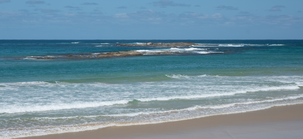 Little Henty reef from the shore