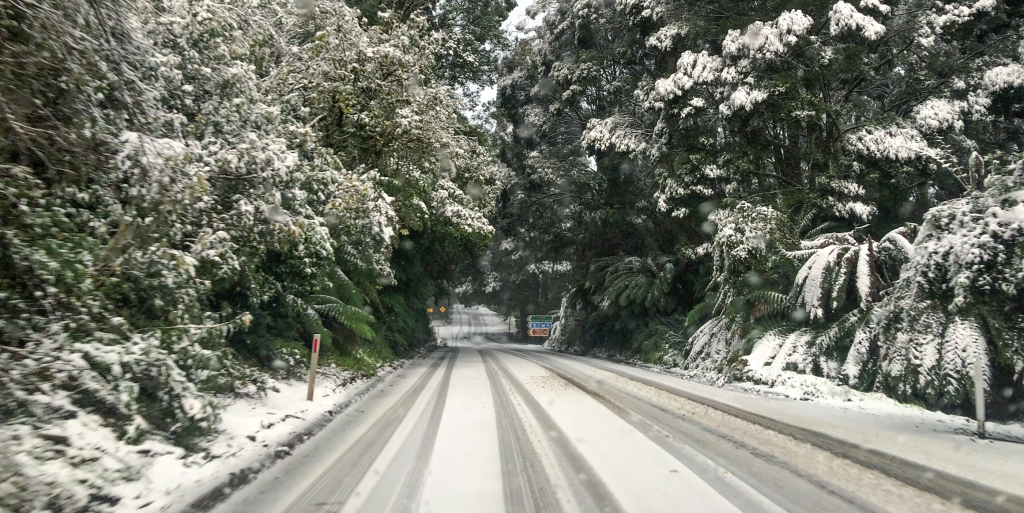Snow in the Otway Ranges near Apollo Bay