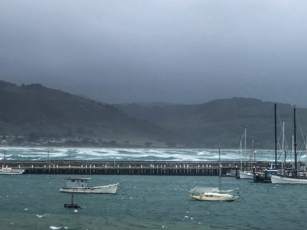Harbour and bay in strong easterly winds