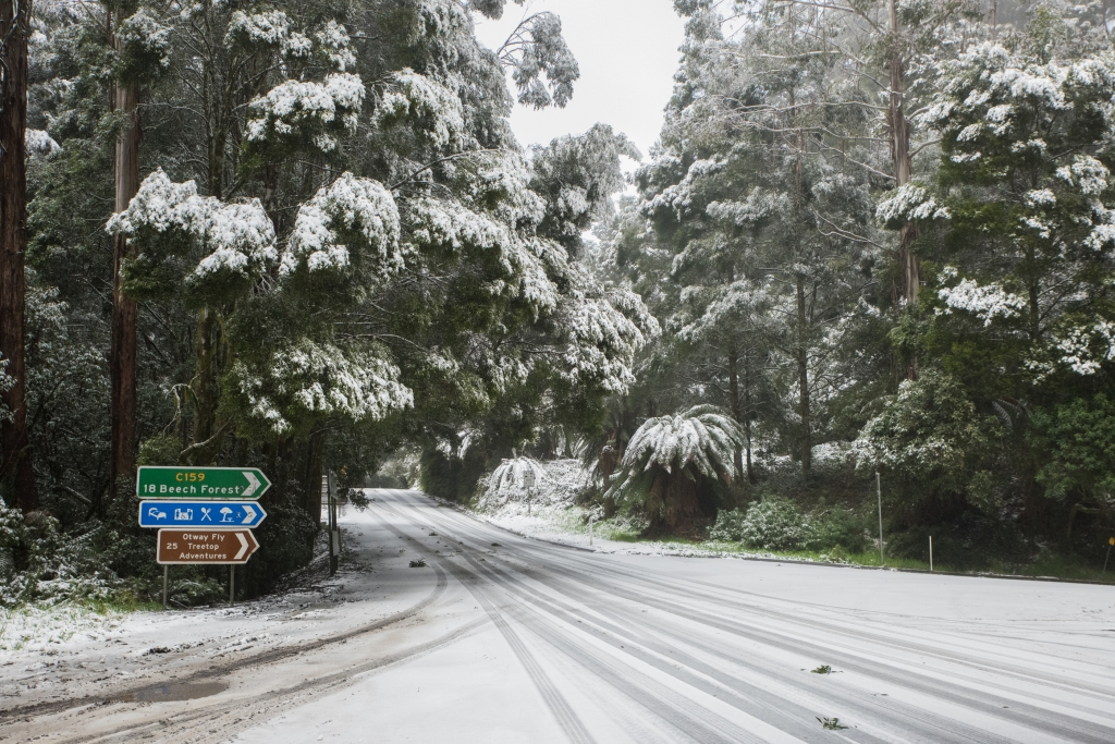 Snow in the Otway Ranges near Turtons Track