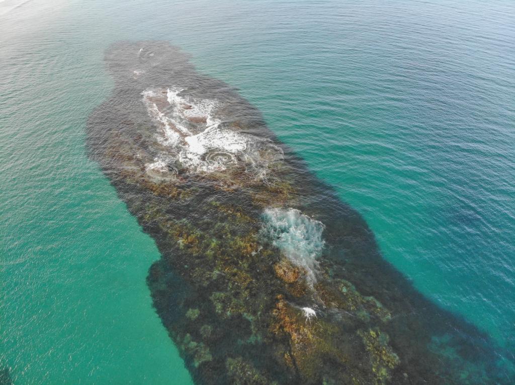 Drone photo of Little Henty Reef