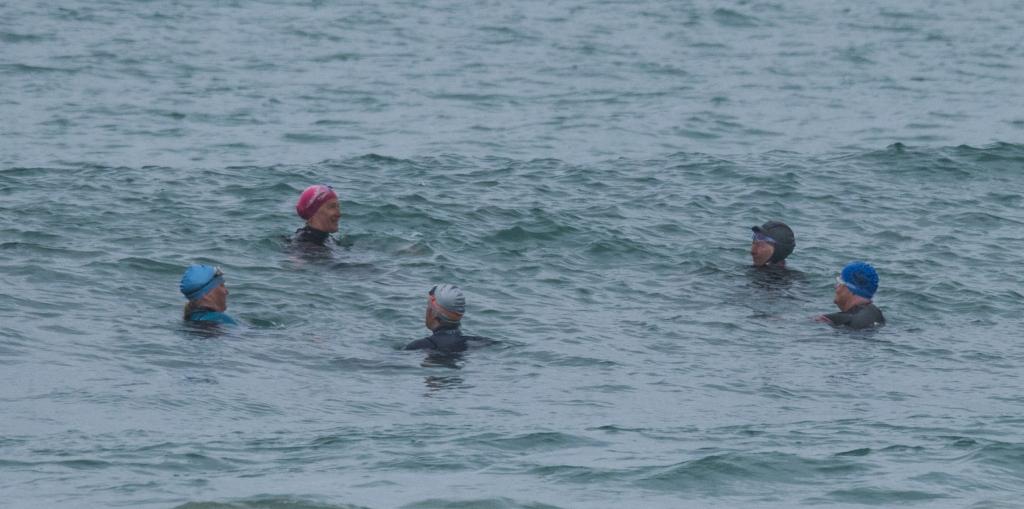 Apollo Bay Ocean Swimmers