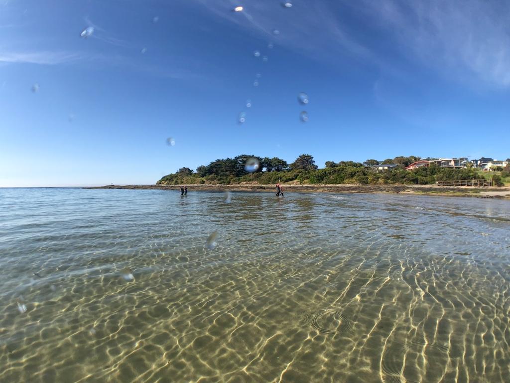 Hayley Point near Marengo Reefs Marine Sanctuary