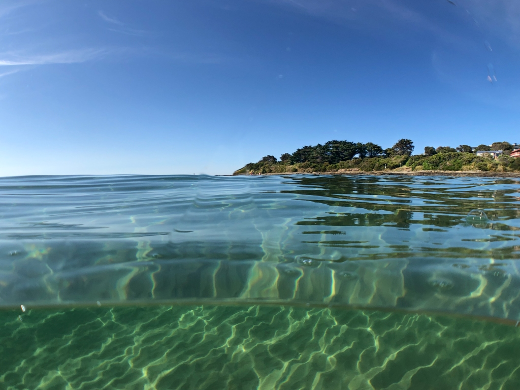 Hayley Point and clear water near Marengo Reefs Marine Sanctuary