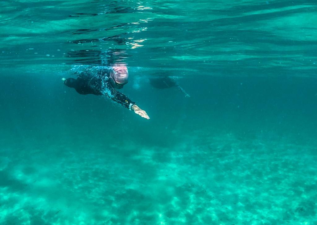 Underwater photo of swimmer at  Marengo Reefs Marine Sanctuary