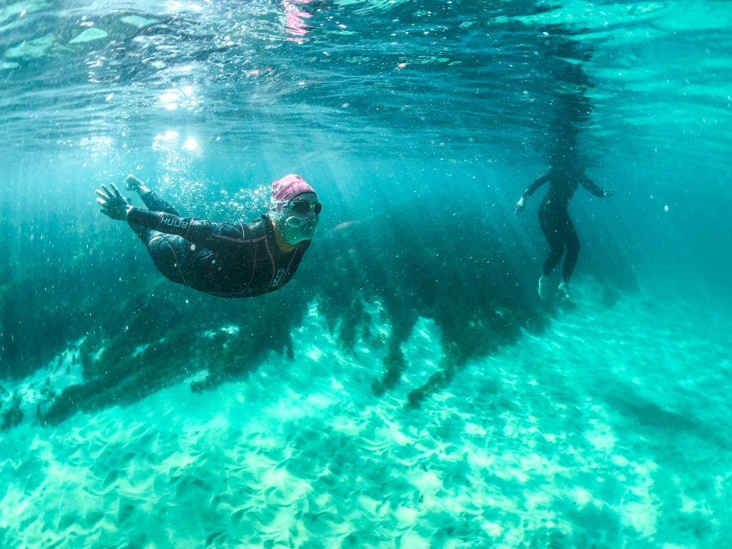 Underwater photo of swimmers at Marengo Reefs Marine Sanctuary, Little Henty Reef