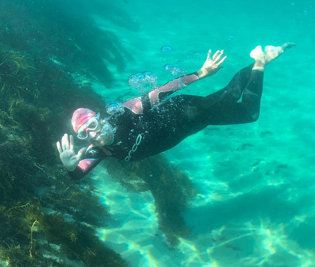 Graceful underwater swimming at Marengo Reefs Marine Sanctuary