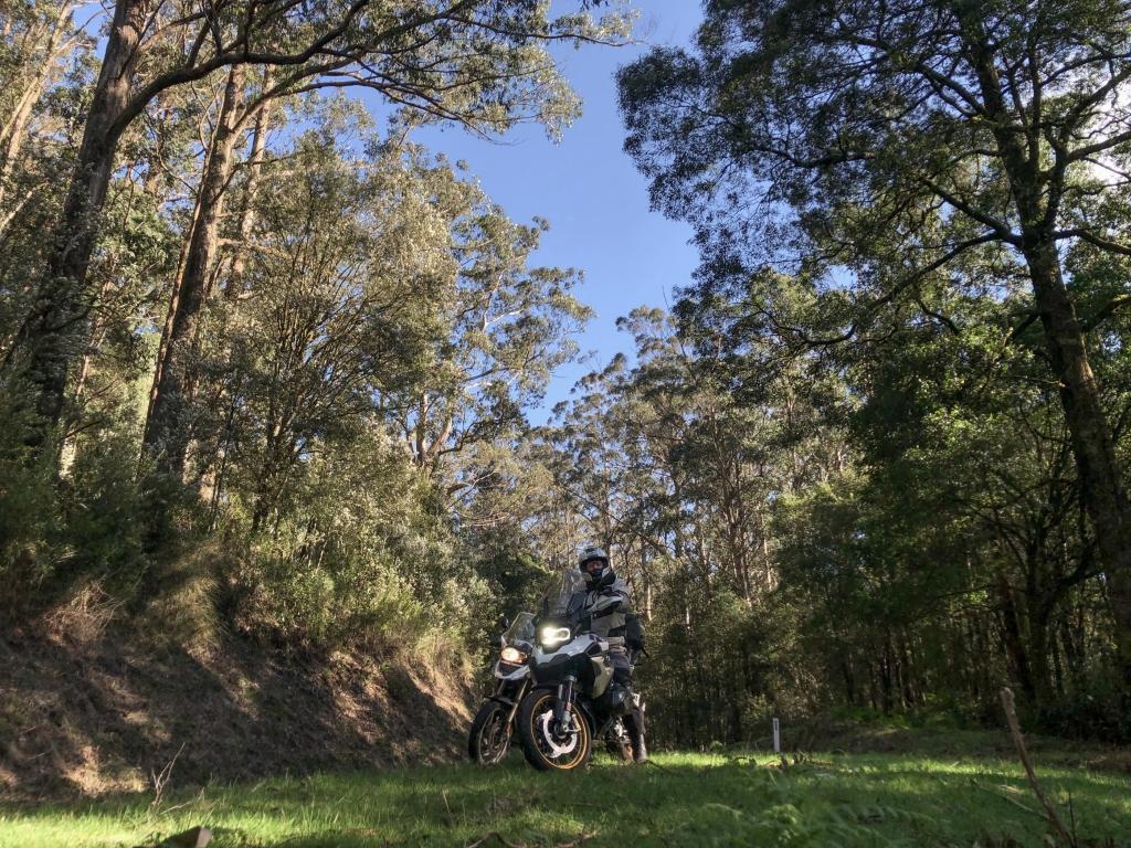 BMW R1200 GS motorbike on dirt road in the Otway Ranges