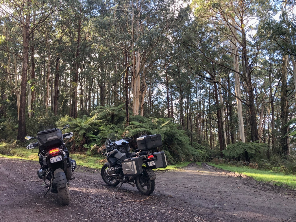 Motorikes on dirt road in the Otway State Forest