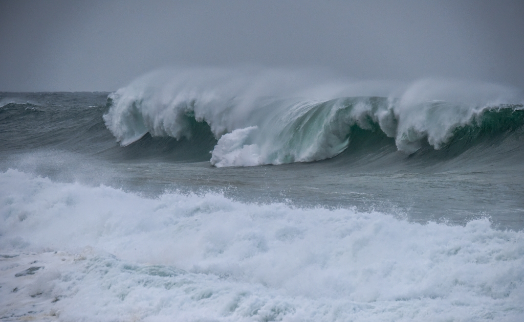 Seabird flying in big winter wave breaking on the west coast of Victoria