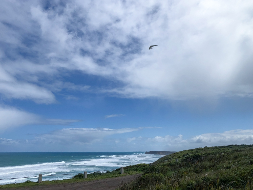 Soaring coastal cliffs in a hang glider at Flaxmans Hill