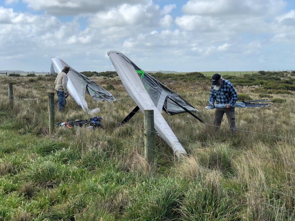Hang gliders in the landing paddock