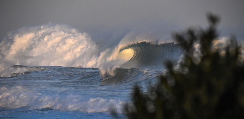 Big whitewater, golden eye of the barrel and green wall of wave in the shadows at sunset.