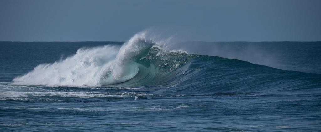 Clean breaking wave on Marengo reef