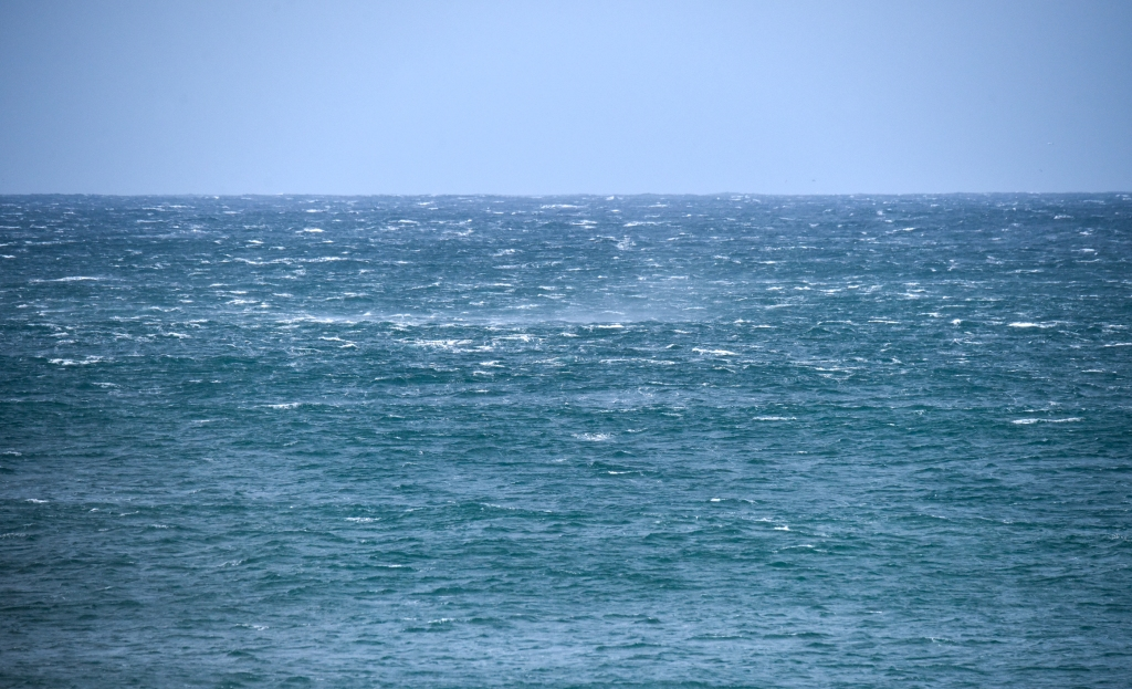 Spindrift on rough ocean in strong winds