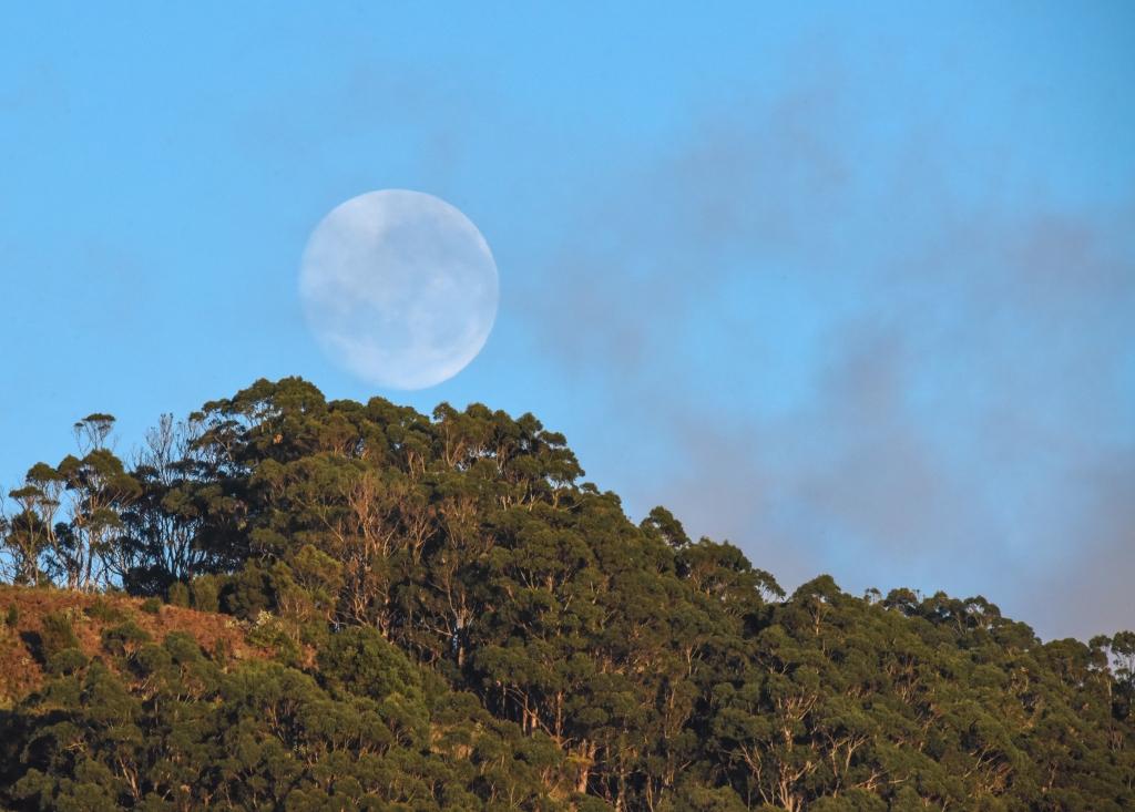 Moon setting after sunrise