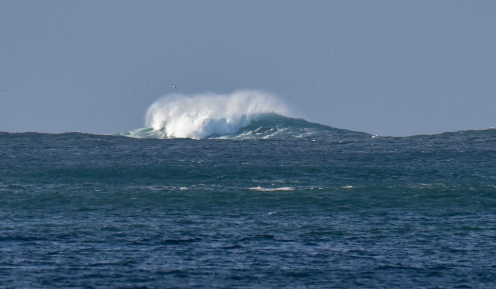Offshore reef with large breaking wave