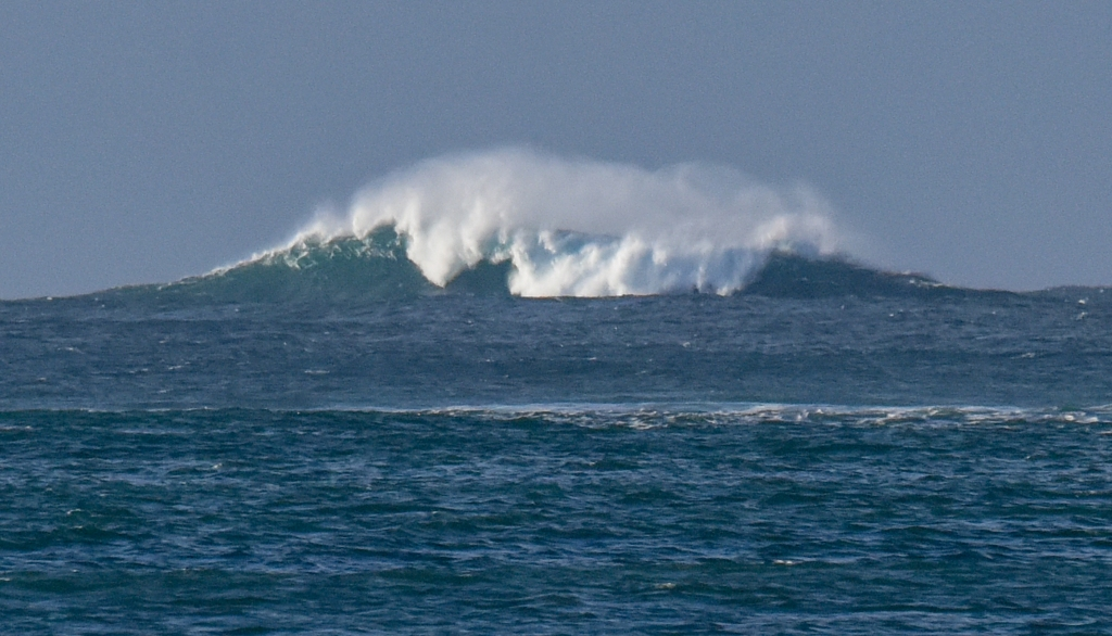 Offshore reef with large breaking wave. Henty Reef