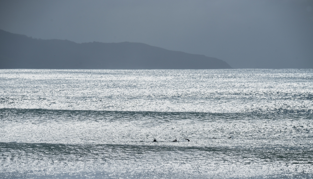 Ocean swimmers at Apollo Bay with Cape Patton in the distance