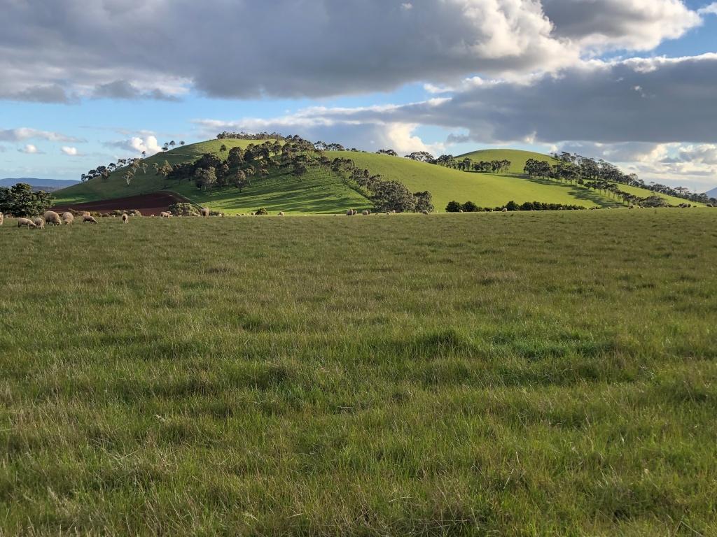 Mount Black, Gordon Victoria